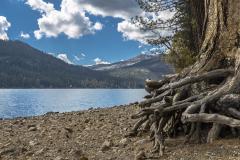Donner_Lake-9310